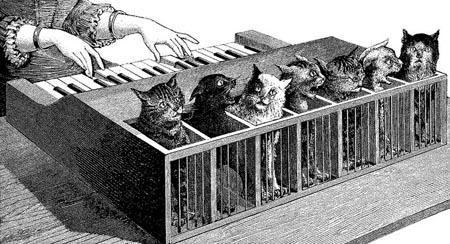 cat_piano
